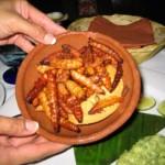 vers du maguey, plat mexicain typique