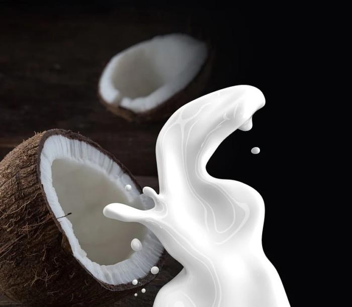 recette healthy de lait de coco maison